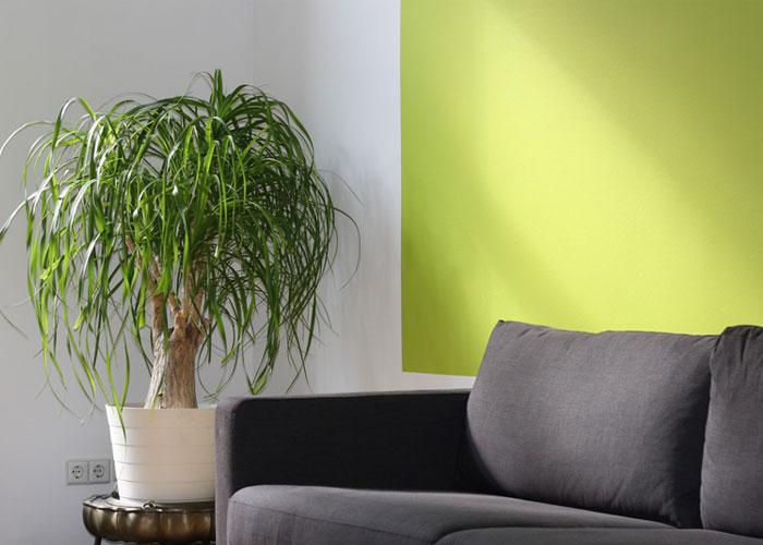 Workspace Interior Design